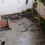 Musa 16 quintal